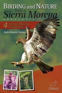 Birding and Nature Trails in Sierra Morena. Andalusia: 4. Sierra Morena Cordobesa