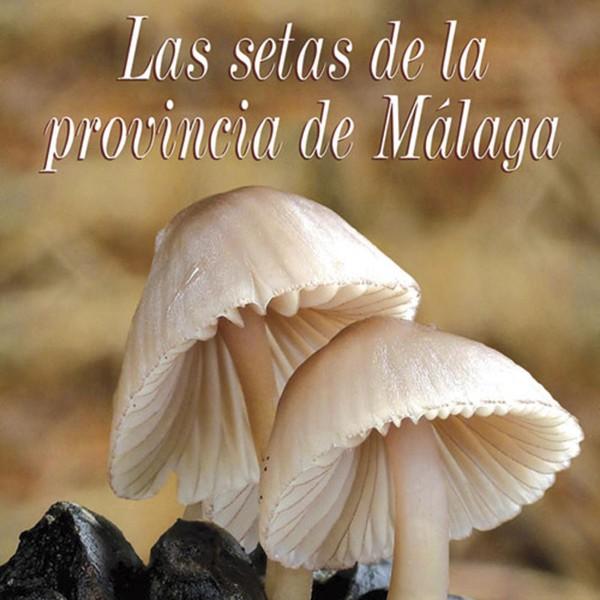Las setas de la provincia de Málaga