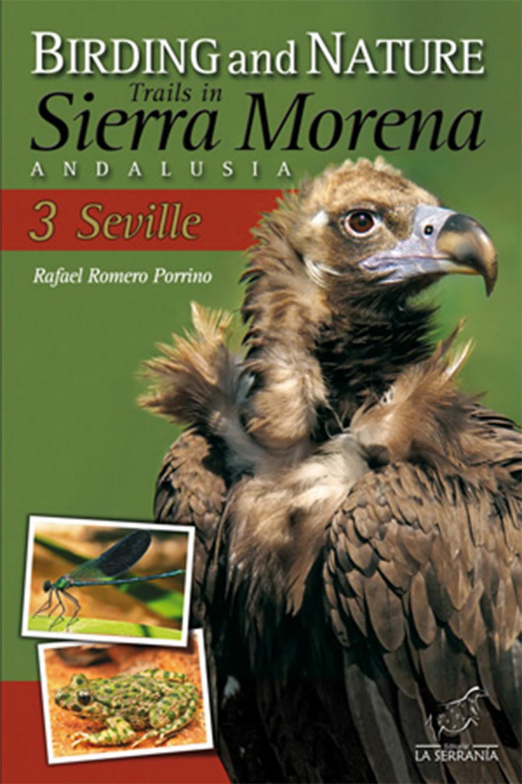Portada de Birding and Nature Trails in Sierra Morena. Andalusia: 3. Seville